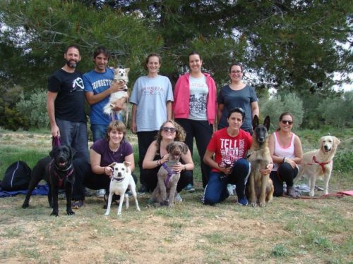 Mindfulness con tu perro,CANILAND, Educación y adiestramiento canino, Valencia