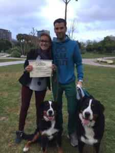 Curso de cachorros, CANILAND, Educación y adiestramiento canino, Valencia