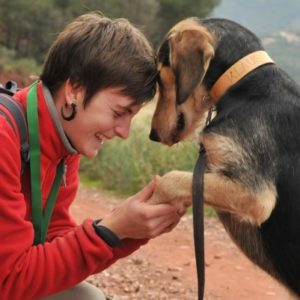 Taller vínculo con tu perro, Caniland  Educación canina Valencia