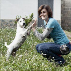 Vínculo con tu perro, CANILAND Escuela canina Valencia