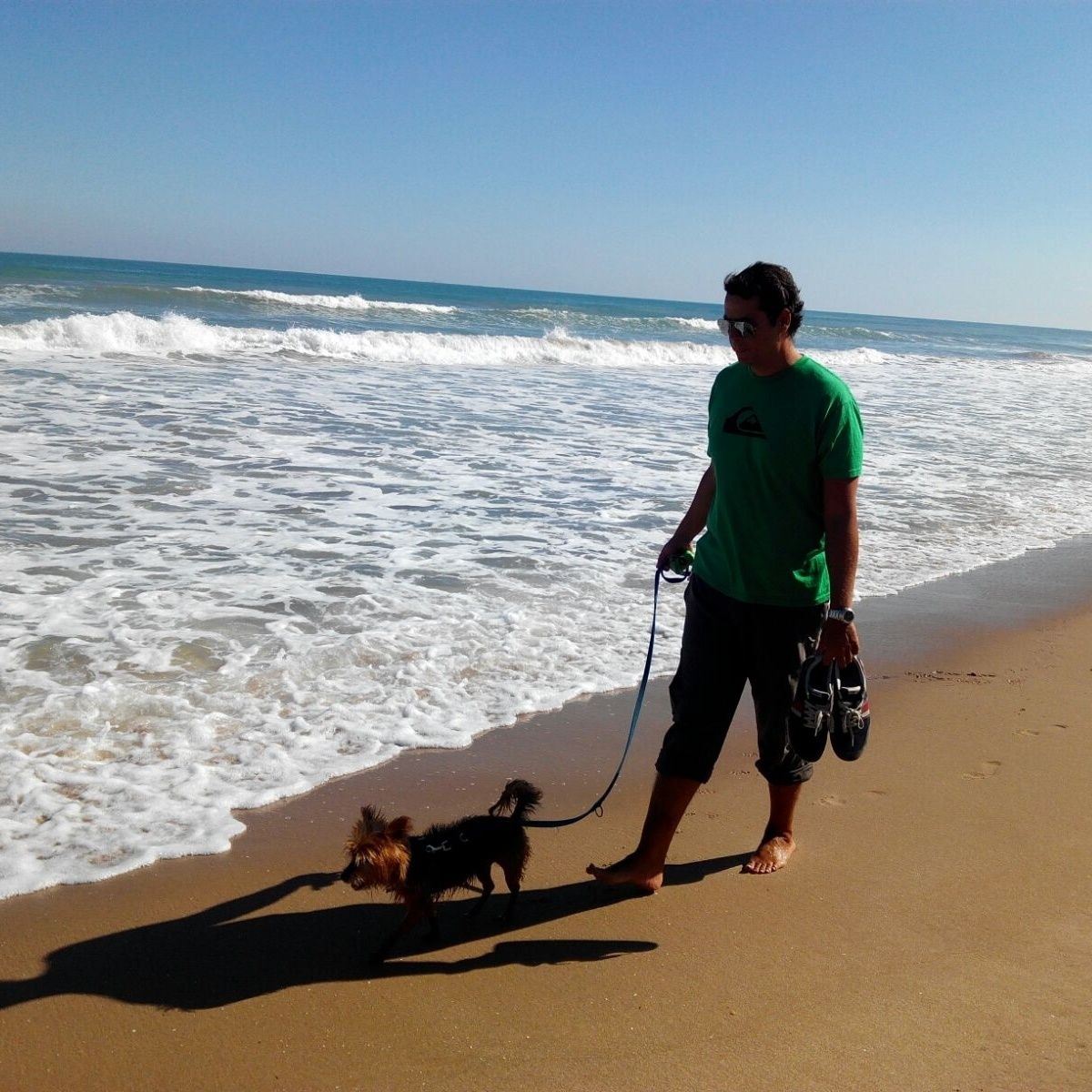 Curso No tirar de la correa y paseo agradable, CANILAND Escuela canina Valencia, educación canina