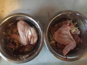 comida perros natural